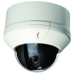 Grocery Store Dome Cameras like PTZ Cameras from Security Camera King.