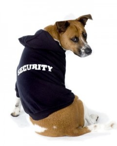 Environmentally Friendly Home Security Solutions