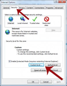 IE Security Custom Level Button