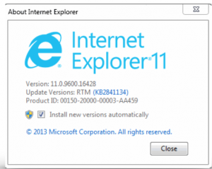 IE Version
