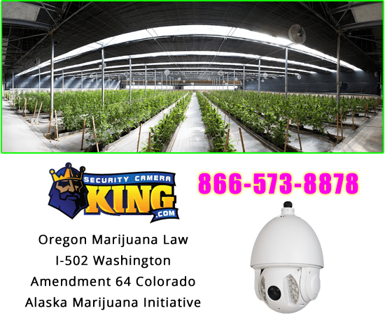 Cannabis Security Camera Compliance