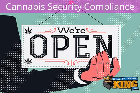 Starting a Cannabis Business