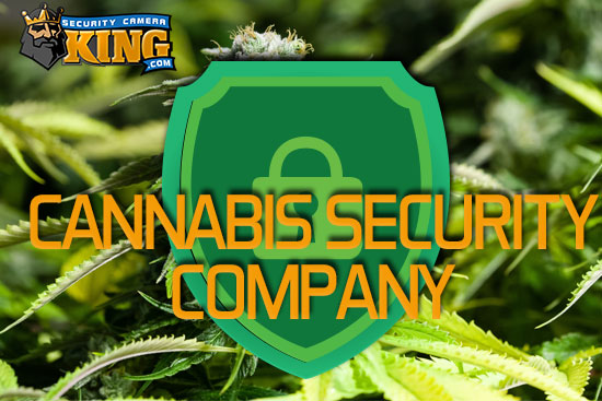 cannabis security companies