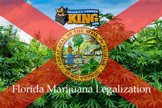 Florida Marijuana Legalization