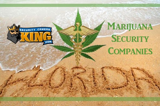 Marijuana Legalization in Florida