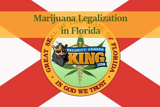 Marijuana Legalization in Florida