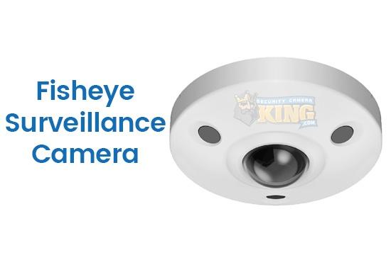 Fisheye Surveillance Camera