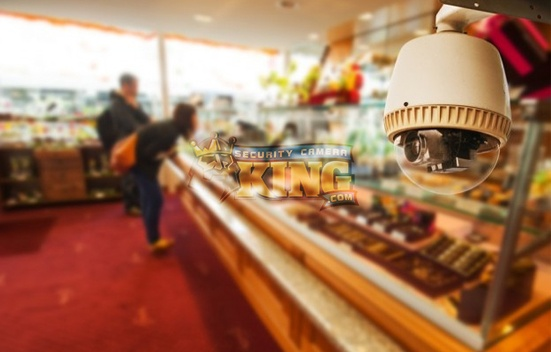 Security Camera System For Small Business