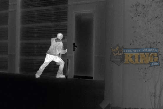 Thermal Camera Security System