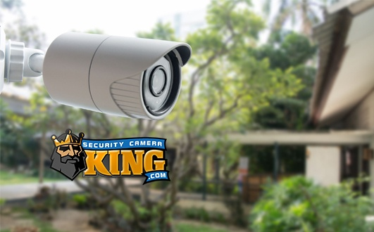 Video Surveillance Camera System
