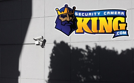 IP Surveillance Cameras
